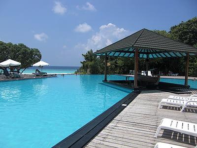 Maldivene, basseng, Sør hav, stille, ferie, øya, slappe av