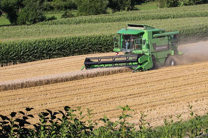 recol·lectora, collita, Segadora, l'agricultura, cereals, granja, escena rural
