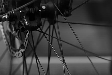 velosipēds, daļa, cikls, rats, velosipēdu, riepa