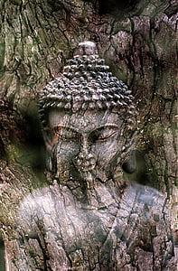 Buddha, meditace, socha, náboženství, duchovní, Buddhismus, náboženské