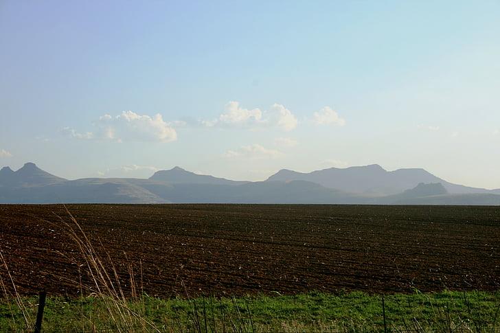 işledim arazi, kahverengi toprak, toprak, Yeşil, çimen, uzun dalgalı otların tutam, Blue Dağları