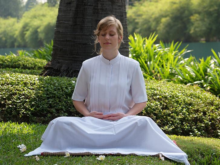 meditar, dona, budista, wat, Phra dhammakaya, Temple, dhammakaya pagoda