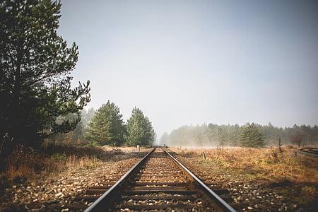 ferrocarril, pistes, paisatge, elements de, salvatge, a l'exterior, paisatge