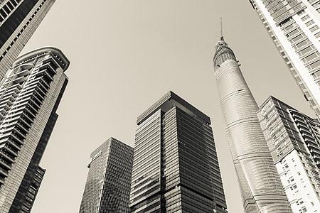 shanghai, skyscrapers, architecture, business, skyscraper, urban Scene, tower