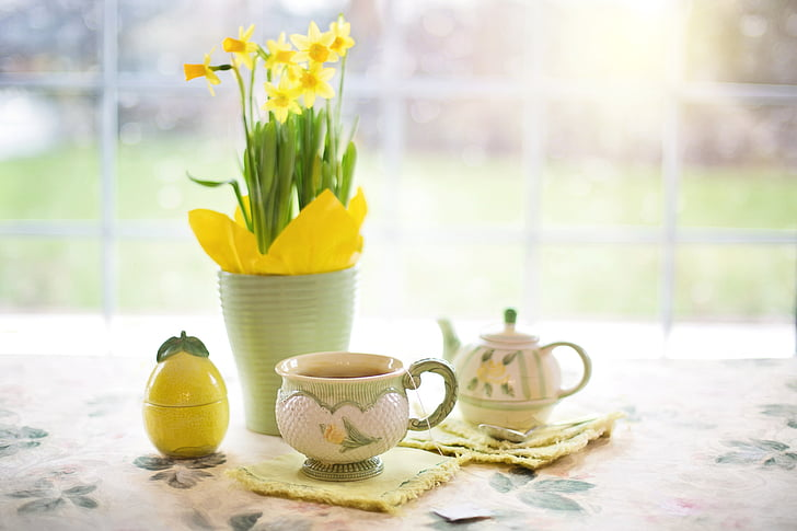 daffodils, tea, tea time, cup of tea, spring, yellow flowers, plant