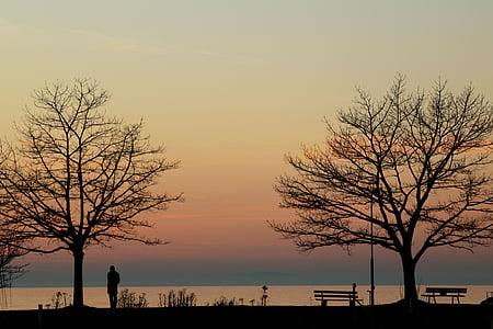 콘스탄스 호수, 저녁, 혼자, 외로운, 호수, 분위기, 물