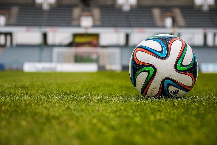 profunditat de camp, camp, herba, futbol, pilota de futbol, camp d'esports, Estadi