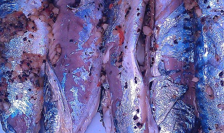 fish, mackerel, spices, mat, skins, cooking, adjusted
