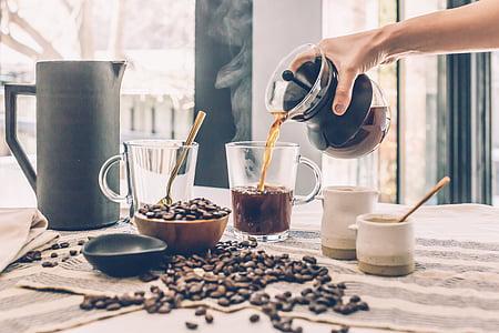 kofeīns, kafijas, pupas, sēklas, no rīta, karstā, dzēriens