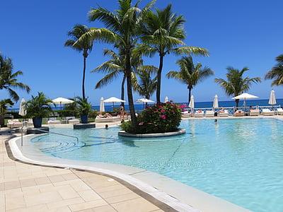 basseng, ferie, Sommer, svømme, slappe av, solen, palmer