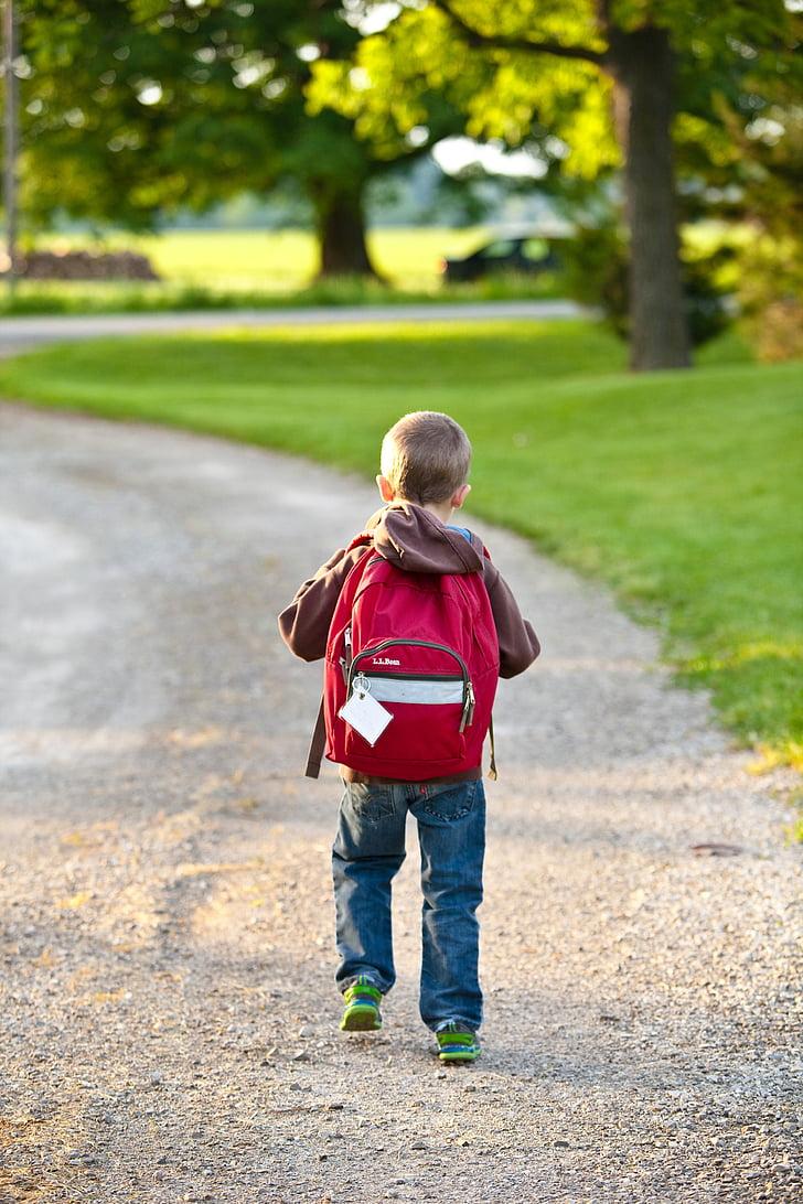 l'escola, motxilla, infantesa, l'educació, bossa, elemental, estudiant