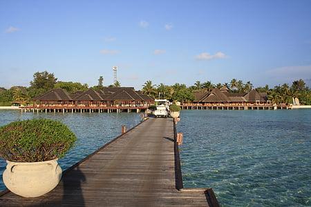 maldives, paradise, island