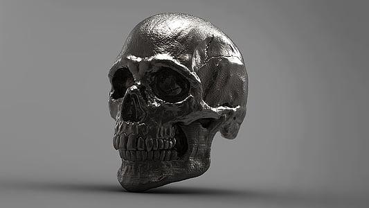 sølv, kranium, 3D, skelet, Studio skud, enkelt objekt, close-up