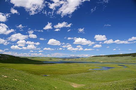 Vall de Hayden, Yellowstone, Vall, paisatge, verd, cel, blau