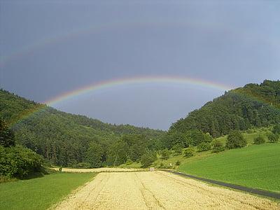 Rainbow, pole, lasu, niebo, krajobraz