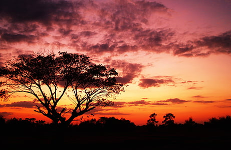 dawn, dusk, nature, outdoors, scenic, silhouette, sky
