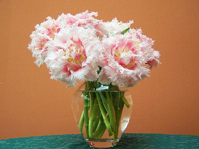 RAM de flors de tulipa, flor de tall, flors de primavera, RAM, Gerro, natura, decoració