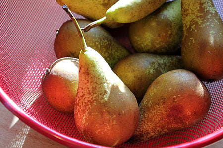 pear, fruits, fruit