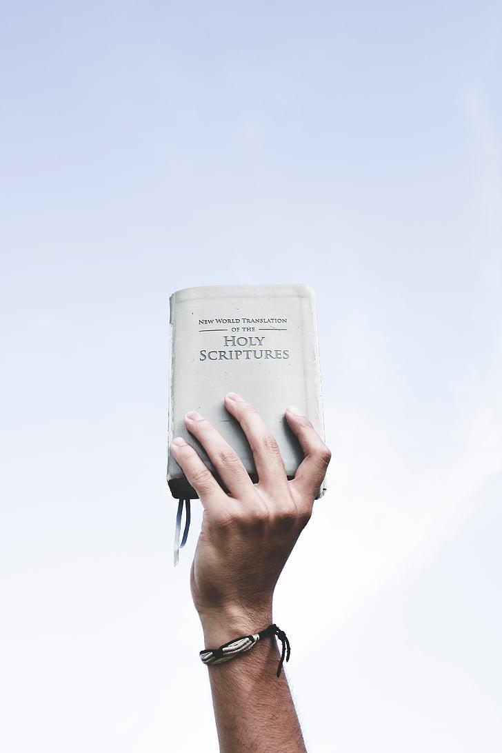 거룩한, 도 서, 성경, 성경, 읽기, 손, 들고