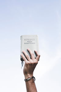 holy, book, bible, scriptures, reading, hand, holding