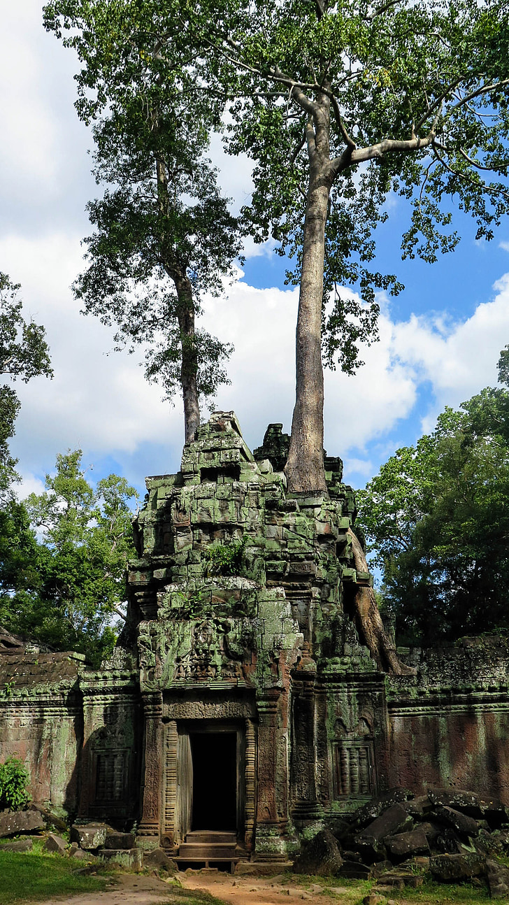 Cambodja, Angkor, Temple, ta prohm, història, Àsia, Temple complex