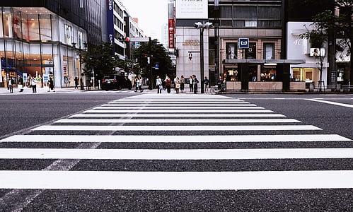 buildings, city, crossing, pedestrian crossing, pedestrians, people, road