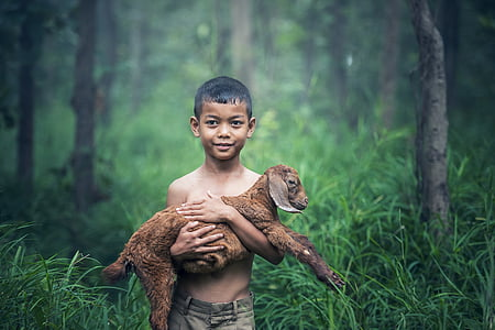 boys, outdoor, thailand, baby, agriculture, mammal, the lawn