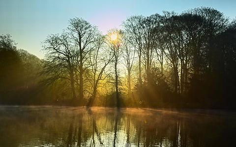 Llac, boira, llum, estat d'ànim, arbres, Sunbeam, sol