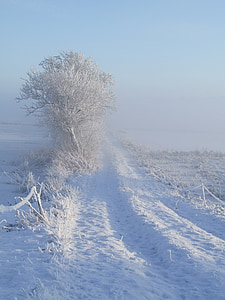 winter, white, snow, away, cold, wintry, mood