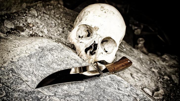 skull, knife, bone, death, human Skull, horror, halloween