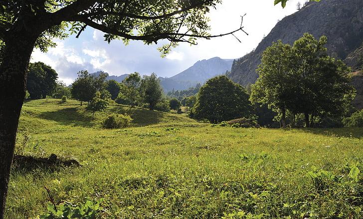 landscape, rest, of course, nature, nature recording