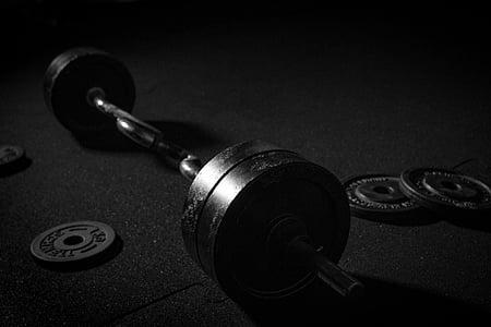 haltere, desporto, pesos, treinamento de força, levantamento de peso, músculos, Treinamento muscular