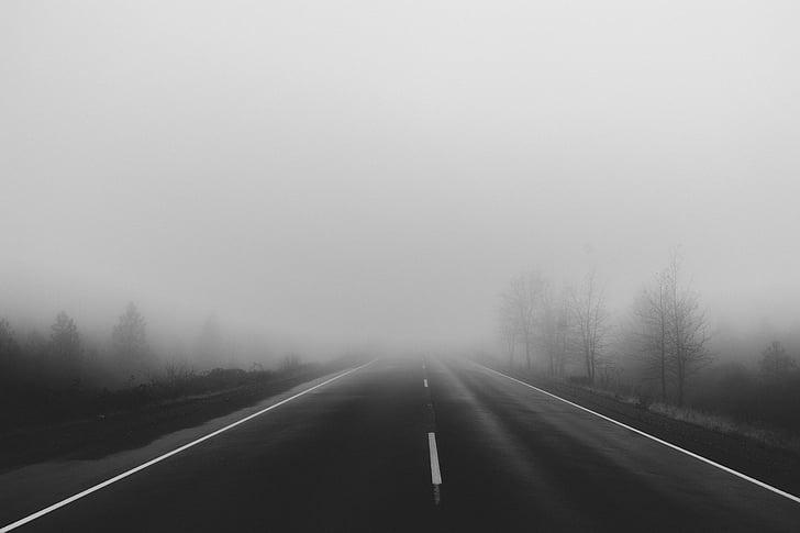 boira, boira, boira, boirosa, carretera, l'autopista, natura