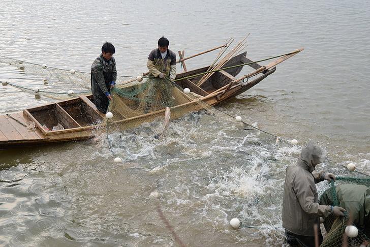 v jazere, ryby, rybár