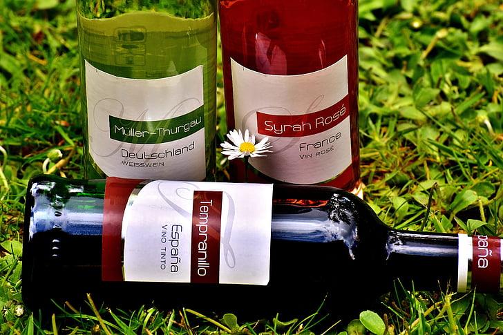 vynas, gėrimas, restoranas, Weinstube, alkoholio, buteliai, vynai