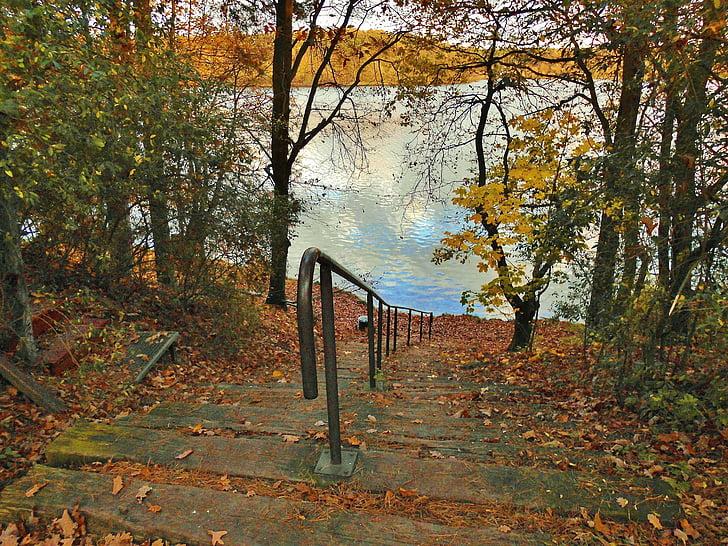 tó, Bank, lépcsők, idilli, ősz, idill, flakesee
