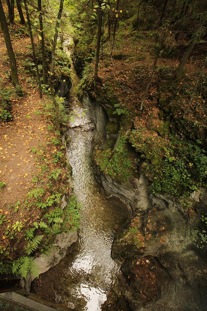 поток, гора, природата, вода, природа пейзаж, дърво, камък