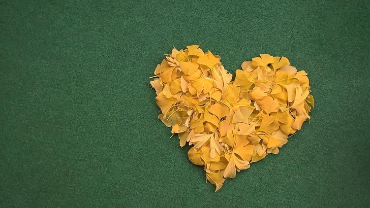 серце, Гінко, Грін, листя, Осінь, квітка, Студія постріл