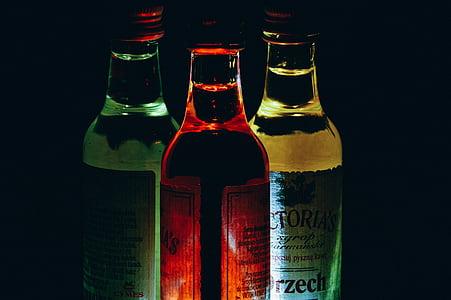 còctels, ampolles, begudes, beguda, vidre, got de còctel, suc