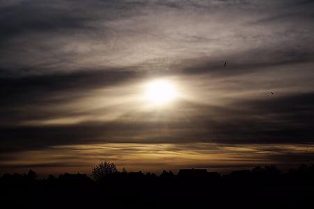 torna la llum, l'hivern, sol, gegenlichtaufnahme, llum del sol, estat d'ànim, sol