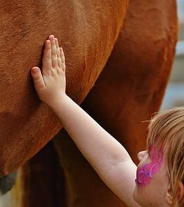nena, gran cavall, ictus, l'amor, pelatge, mà, mà del nen