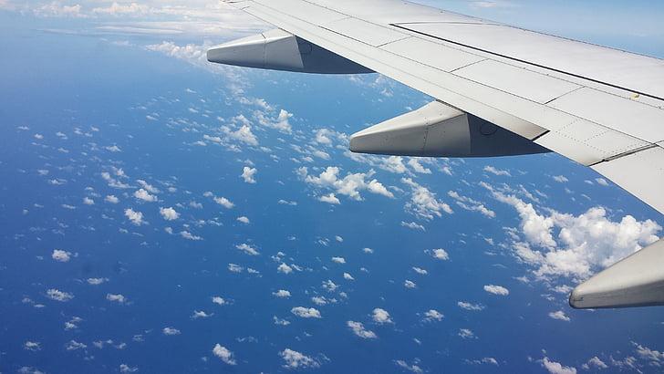 lentokone, Sky kuva, Sky kuva koneesta, pilvet, kone, lento, koneen siipi