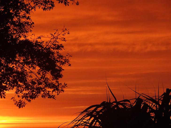 sunset, sky, abendstimmung