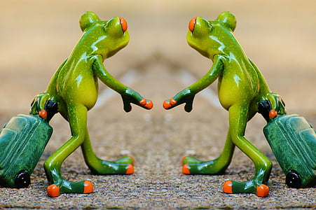 frog, together, travel, luggage, holdall, go away, holiday
