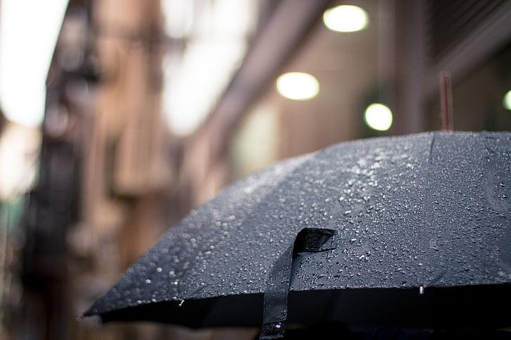pluja, plujós, paraigua, temps
