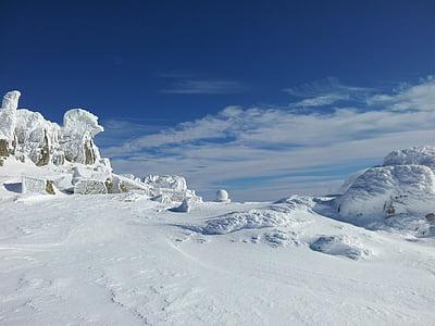 winter, winter magic, blue sky, sky, blue, white, snow