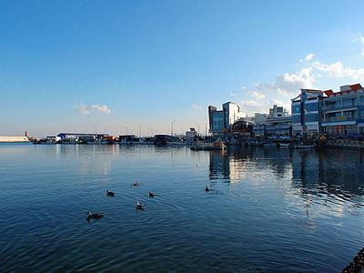 jūra, dangus, Gangwon ar, Sokcho, daepo uostas, žiemos jūra
