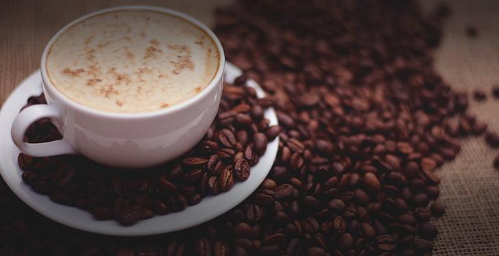 grans de cafè, tassa de cafè, Copa, cafè, beguda, tassa de cafè, fesols