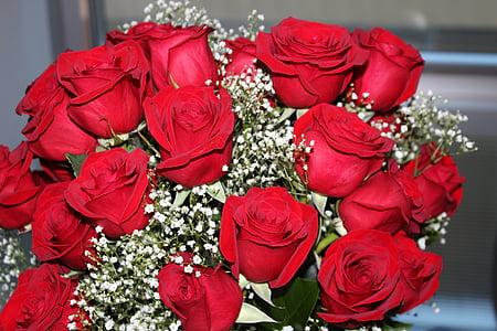 Roses, vermell, Sant Valentí, l'amor, Romanç, roses vermelles, flor