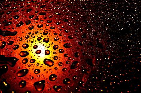 σταγόνες, βροχή, φόντο, εποχές, νερό, μακροεντολή, αφήστε το